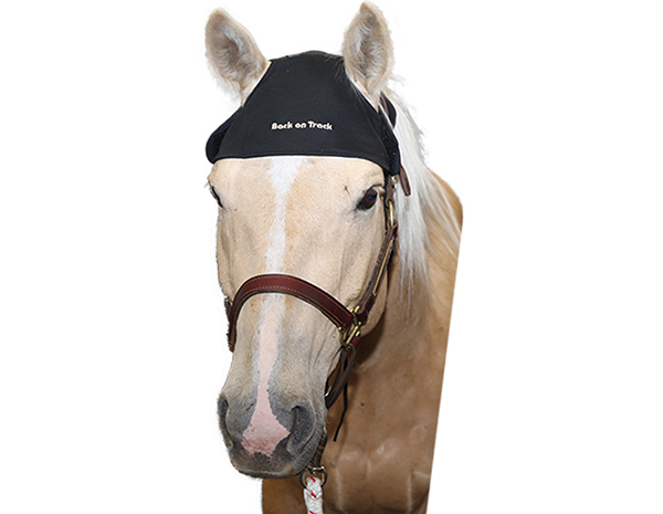 Back On Track Therapeutic Equine Head Cap Horse N Pony Depot